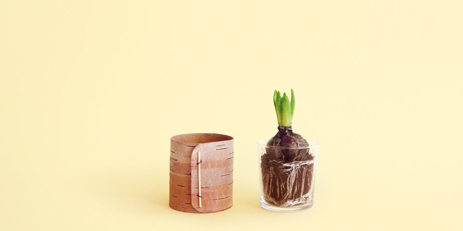 Birch Bark Containers with Cork Bases