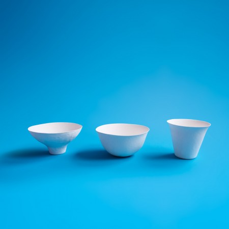 WASARA Compostable Dinnerware - Bowl
